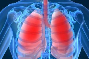 Foto-alsfund-lungs-01